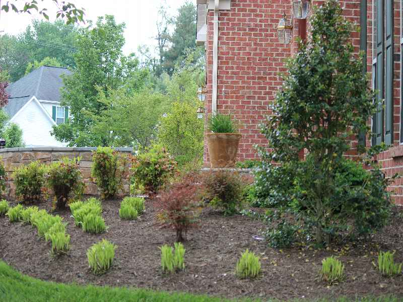 Maryland Landscaping